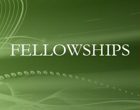 Extension of the application deadline for fellowships